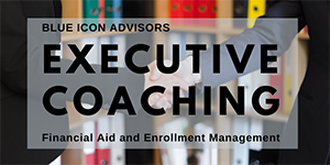 Executive Coaching by Blue Icon Advisors